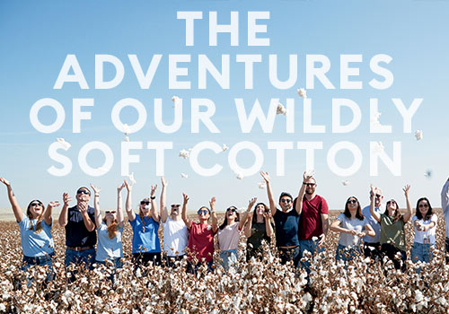 The Adventures of Our Wildly Soft Cotton
